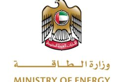 UAE: 25% of electricity from nuclear in the next 4 years