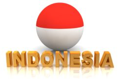 Indonesia National Economic and Industrial Committee asked the government to build a nuclear power plant