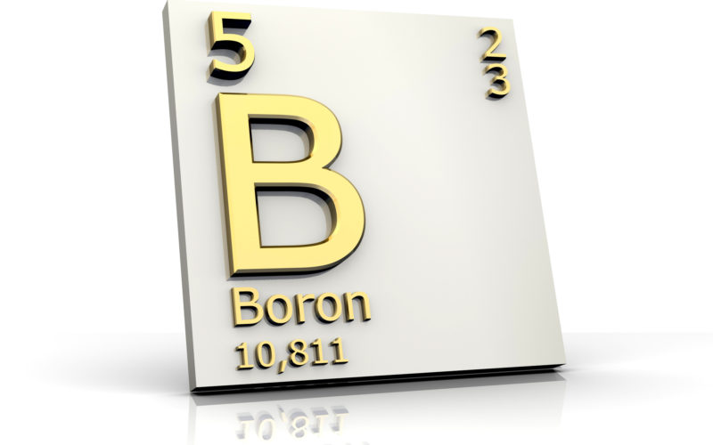 Product obtained from boron mine absorbs radiation