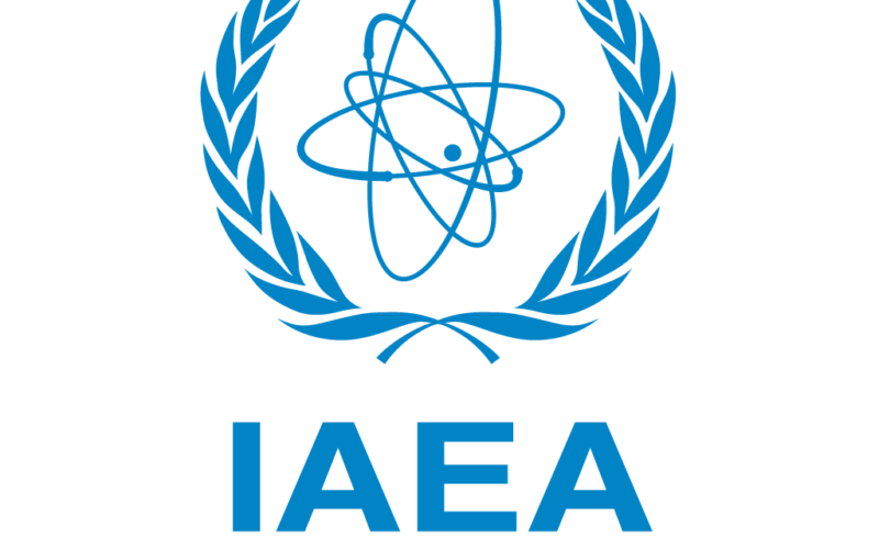 IAEA Board Appoints Rafael Grossi as Director General