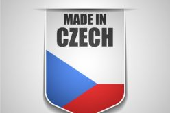 Russian-Czech intergovernmental commission and joint nuclear projects